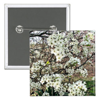 Cluster of Pear Tree Blossoms Button