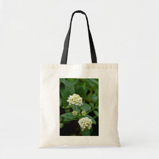 Clustered White Flowers With Yellow Centers flower Canvas Bag