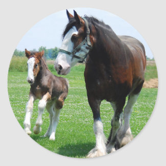 Clydesdale and Filly Round Sticker