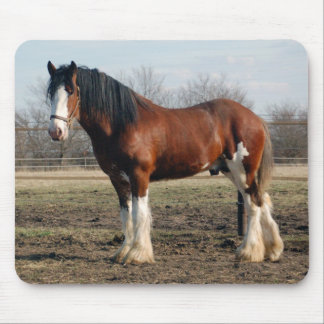 Clydesdale mousepad