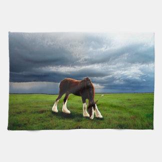 Clydesdale Storm Tea Towel