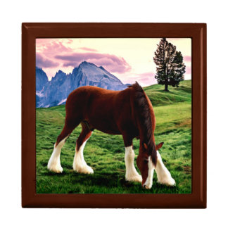 Clydesdale Sunset Gift Box