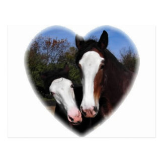 Clydesdales in heart postcard