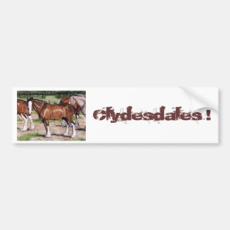 Clydesdales Rule Horse Art Bumper Sticker