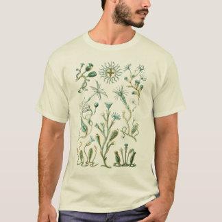 Cnidaria - Stinging-celled animals T-Shirt