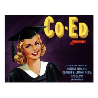 """Co-Ed Brand"" Postcard"