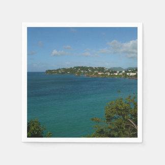 Coast of St. Lucia Caribbean Vacation Photo Paper Serviettes