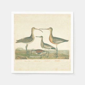Coastal Antique Birds Audubon Marsh Disposable Napkins