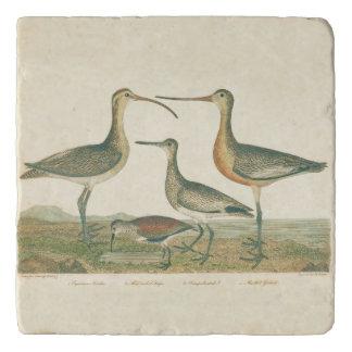 Coastal Antique Birds Audubon Marsh Trivet