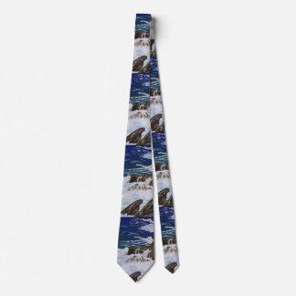 Coastal Falls Tie
