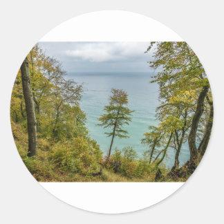 Coastal forest on the Baltic Sea coast Classic Round Sticker