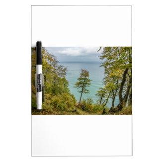 Coastal forest on the Baltic Sea coast Dry Erase Board