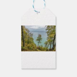 Coastal forest on the Baltic Sea coast Gift Tags