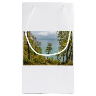 Coastal forest on the Baltic Sea coast Small Gift Bag