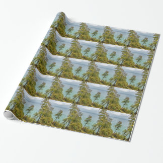 Coastal forest on the Baltic Sea coast Wrapping Paper