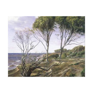 Coastal Landscape Stretched Canvas Print