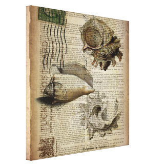 coastal modern vintage french botanical seashell canvas print
