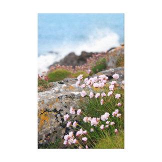 coastal pink wildflowers canvas prints
