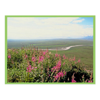 Coastal Plain Post Card