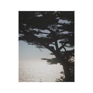 Coastal Shadow Stretched Canvas Print