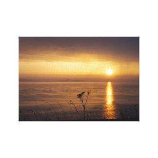 """Coastal Sunrise"" Canvas Prints"