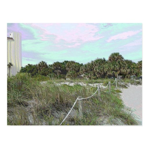 Coastal Trail Photo in Soft Plastic Post Cards