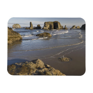 Coastal views, Bandon, Oregon Magnet
