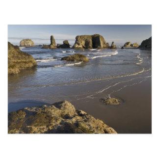 Coastal views, Bandon, Oregon Postcard