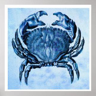 Coastal- vintage blue crab print