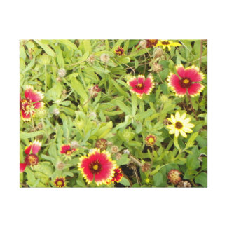 COASTAL WILDFLOWERS Wrapped Canvas Stretched Canvas Prints