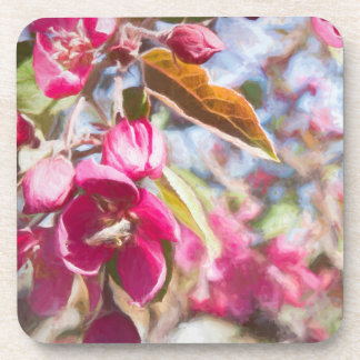 Coaster Cherry Tree In Bloom