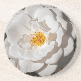 Coaster, Sandstone with a white rose Coaster