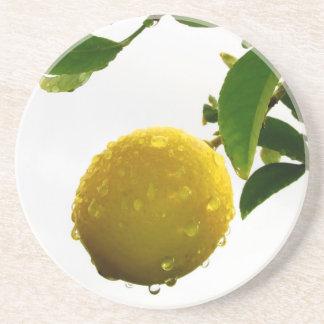 Coaster - Wet lemon