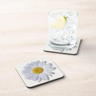 Coasters - Hard Plastic - New Daisy on Off White