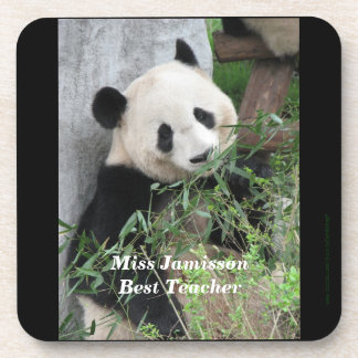 Coasters, Set of 6, Panda, Best Teacher Coasters