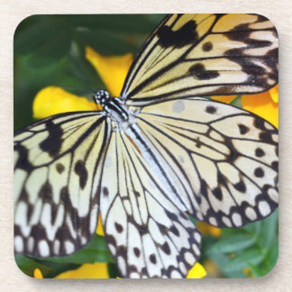 Coasters with cork back/Paperkite Butterfly