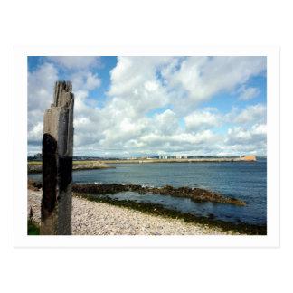 Coastline View Postcard
