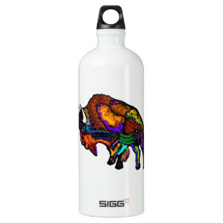 Coat of Many Colors Water Bottle