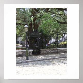 Cobbled Street in Charleston, SC Poster