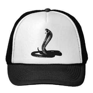 Cobra - black cap