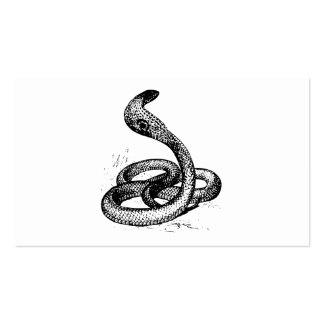 Cobra Business Card Template