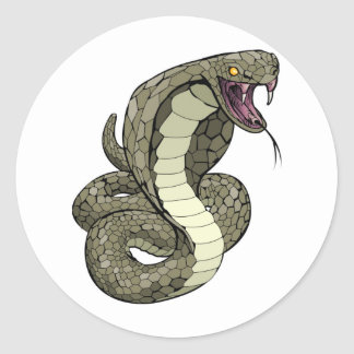 Cobra snake about to strike classic round sticker