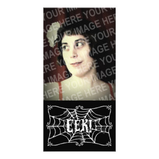 Cobweb EEK Photo Cards