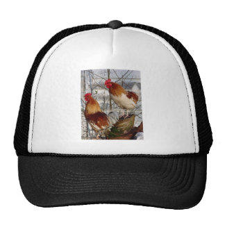 Cock-a-doodle-do Mesh Hats