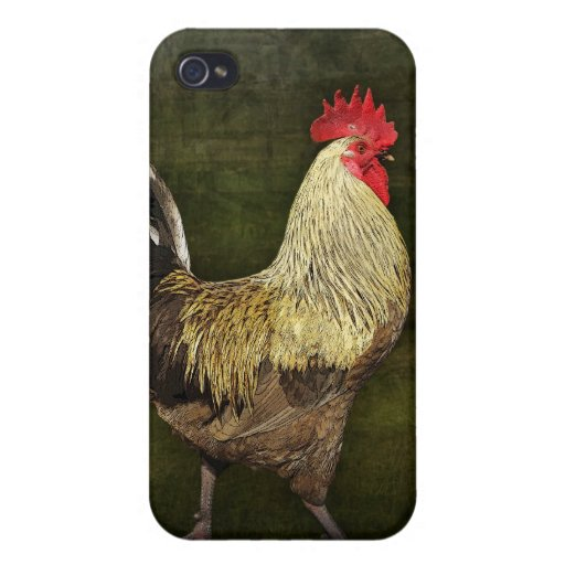 Cock-A-Doodle-Doo iPhone Speck Case iPhone 4/4S Covers