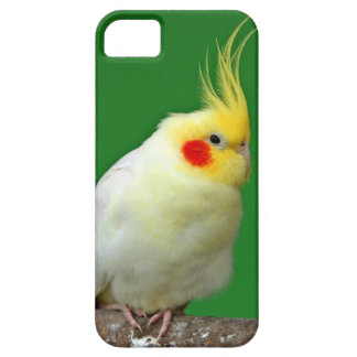 Cockatiel bird beautiful iphone 5 case mate barely
