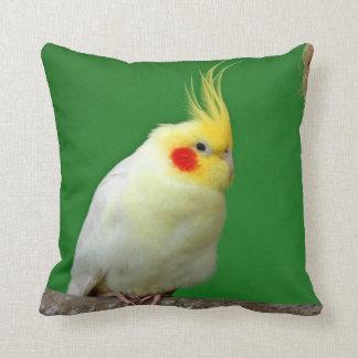 Cockatiel bird beautiful photo cushion, pillow