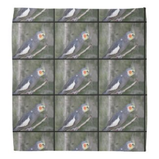 Cockatiel Bird Head Kerchief