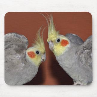 Cockatiel Duo Mousemat