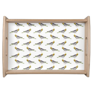Cockatiel Frenzy Tray (choose colour)